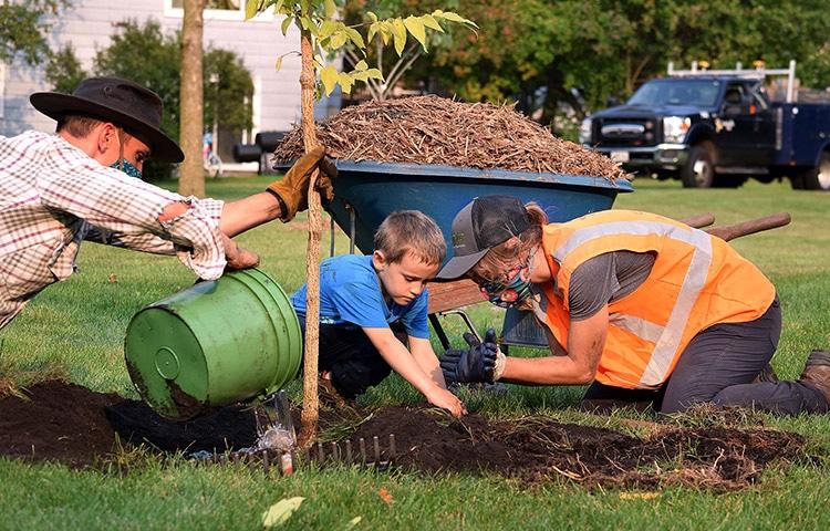 Adding trees to Minneapolis with Green Futures