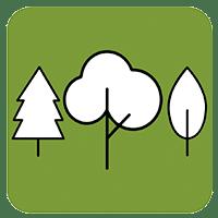 Tree Trust Tree Planting